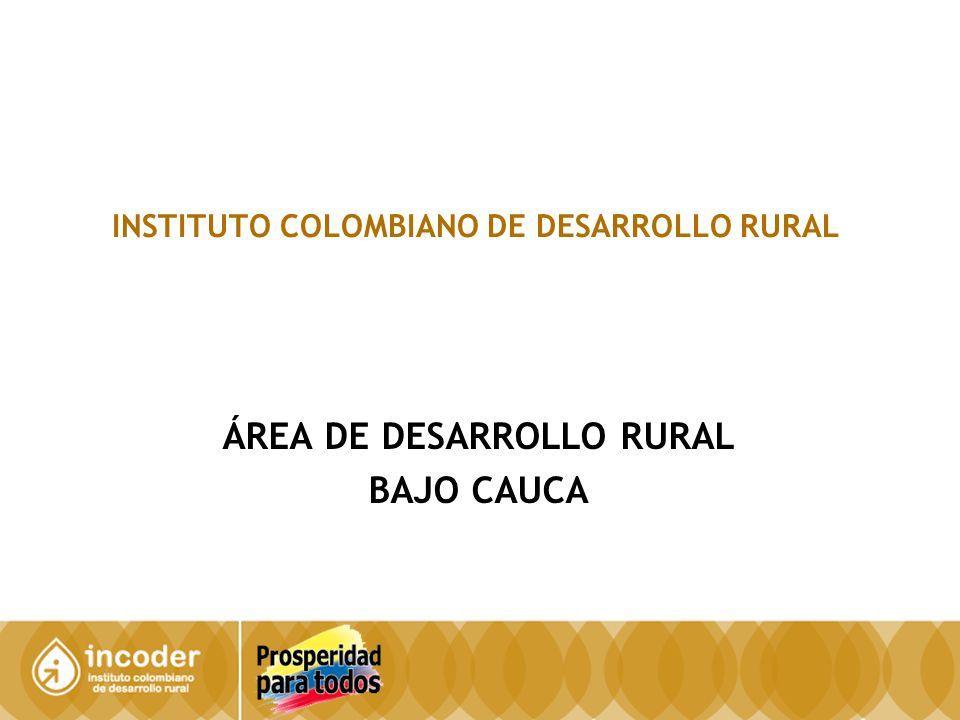 INSTITUTO COLOMBIANO DE DESARROLLO RURAL ÁREA DE DESARROLLO RURAL BAJO CAUCA