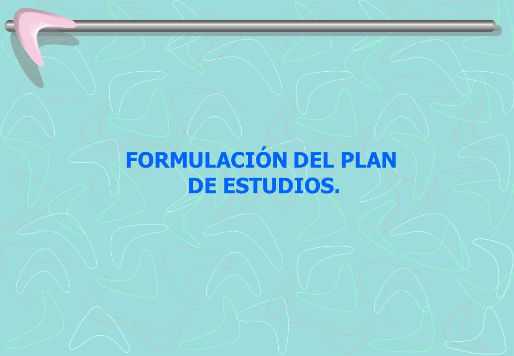 FORMULACIÓN DEL PLAN DE ESTUDIOS.