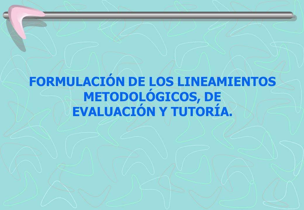 FORMULACIÓN DE LOS LINEAMIENTOS METODOLÓGICOS, DE EVALUACIÓN Y TUTORÍA.