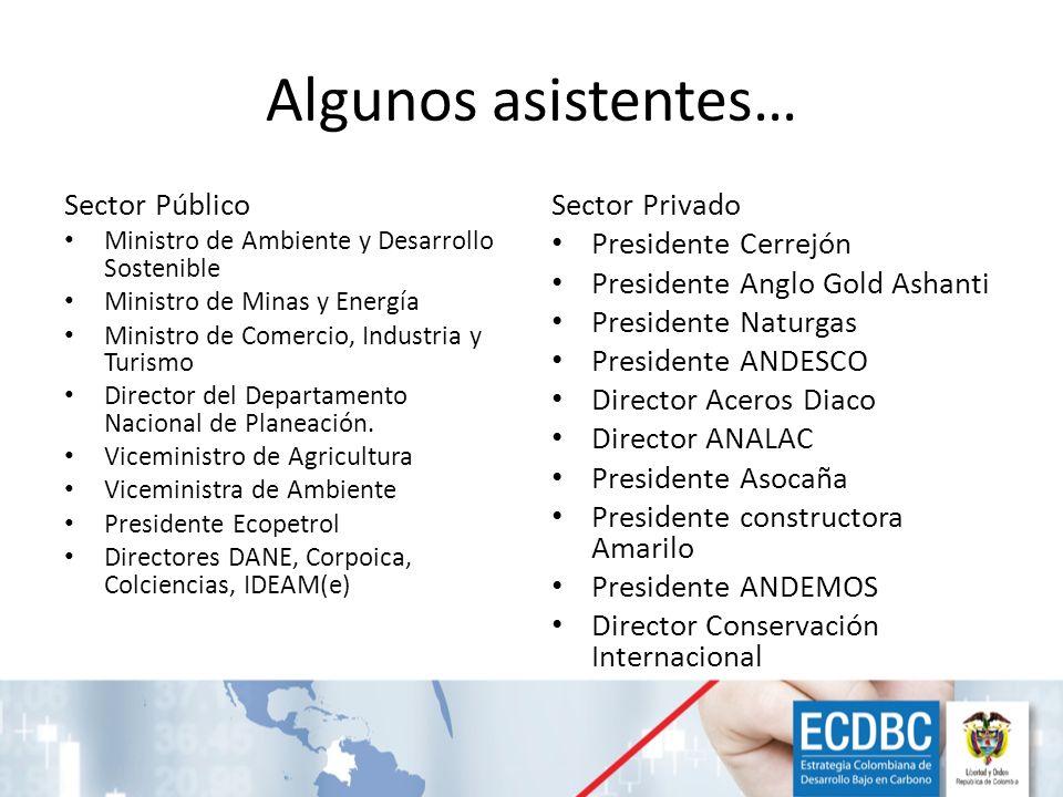 Algunos asistentes… Sector Público Ministro de Ambiente y Desarrollo Sostenible Ministro de Minas y Energía Ministro de Comercio, Industria y Turismo