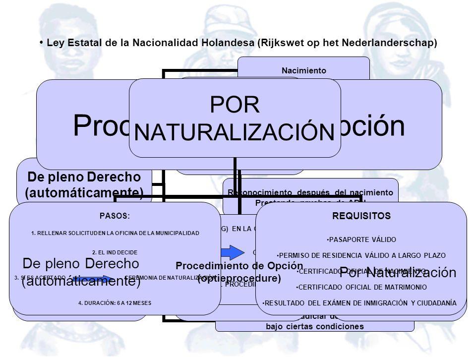 De pleno Derecho (automáticamente) Nacimiento Reconocimiento antes del nacimiento Reconocimiento antes que el menor tenga 7 años Reconocimiento despué