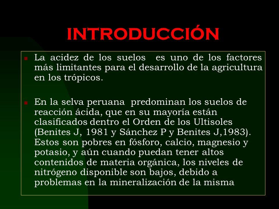 UNIVERSIDAD NACIONAL DE SAN MARTÍN Facultad De Ciencias Agrarias EFECTO DEL ENCALADO EN UN ULTISOL DE LA PROVINCIA DE LAMAS (BAJO MAYO), EN EL RENDIMI