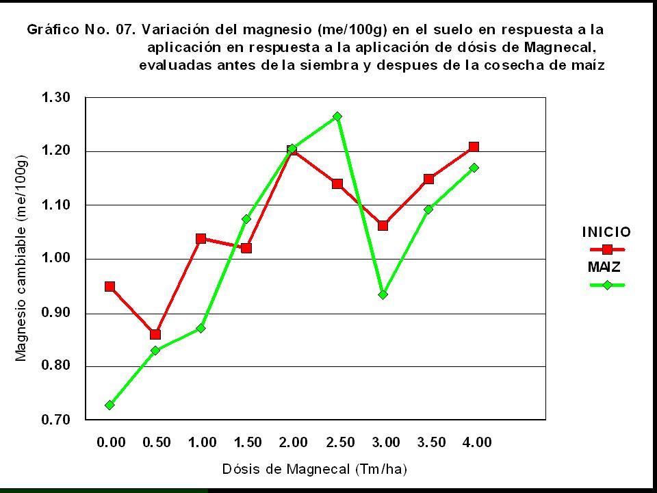 Magnesio Cambiable