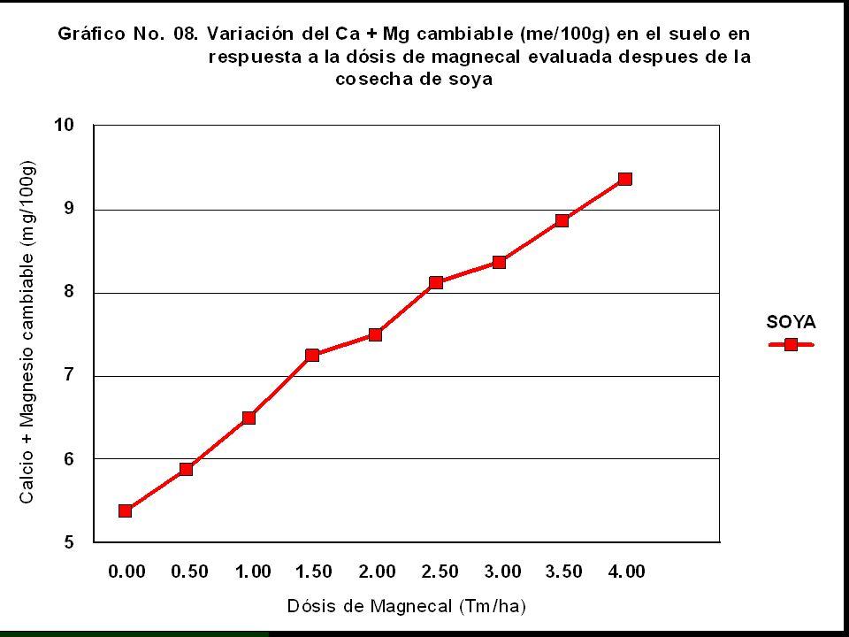 NÚMERO DE ORDEN T R A T A M I E N T O Ca + Mg Cambiables SIGNIF. DE DUNCAN ClaveDosis Magnecal 1 2 3 4 5 6 7 8 9 T9 T8 T7 T6 T5 T4 T3 T2 T1 4.0TM/Ha 3