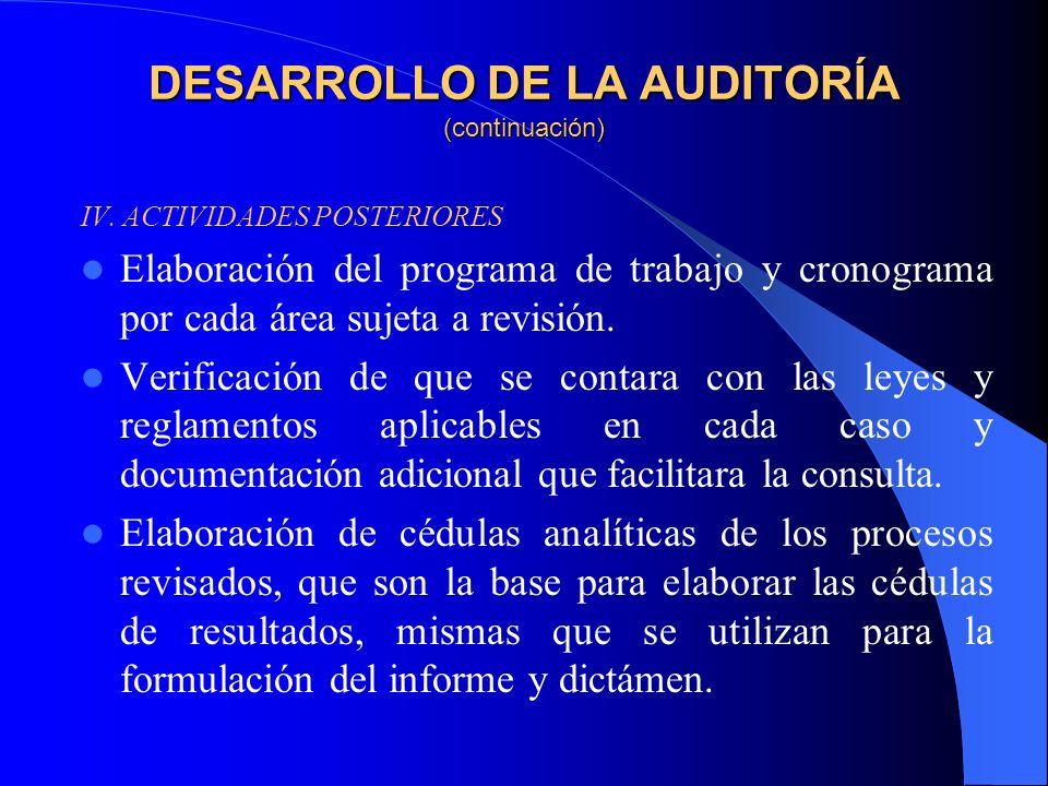 DESARROLLO DE LA AUDITORÍA (continuación) IV.