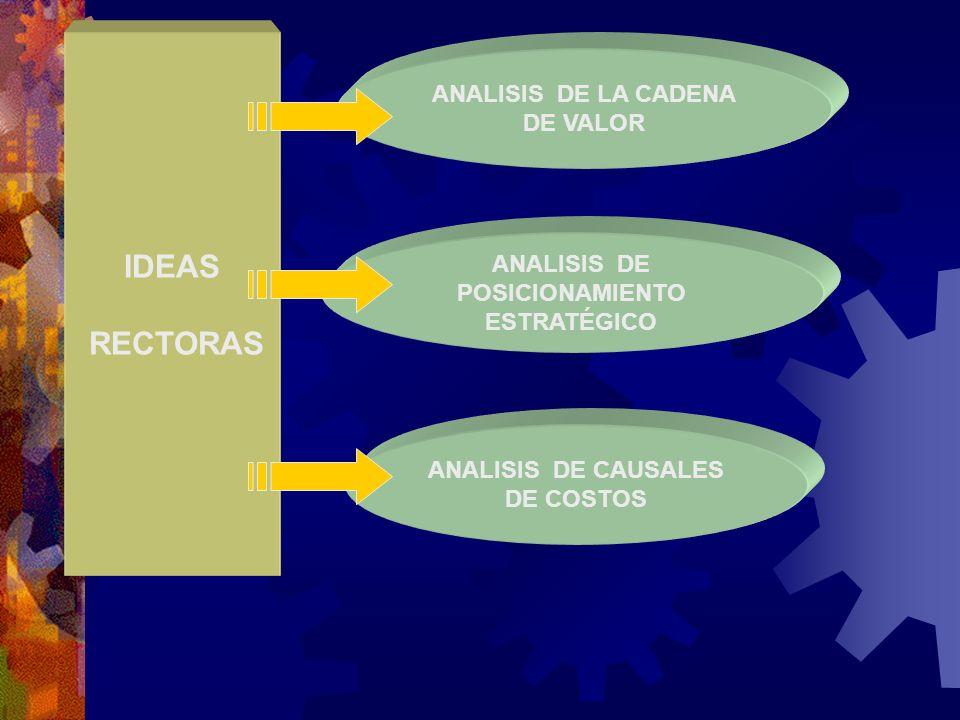 IDEAS RECTORAS ANALISIS DE LA CADENA DE VALOR ANALISIS DE POSICIONAMIENTO ESTRATÉGICO ANALISIS DE CAUSALES DE COSTOS