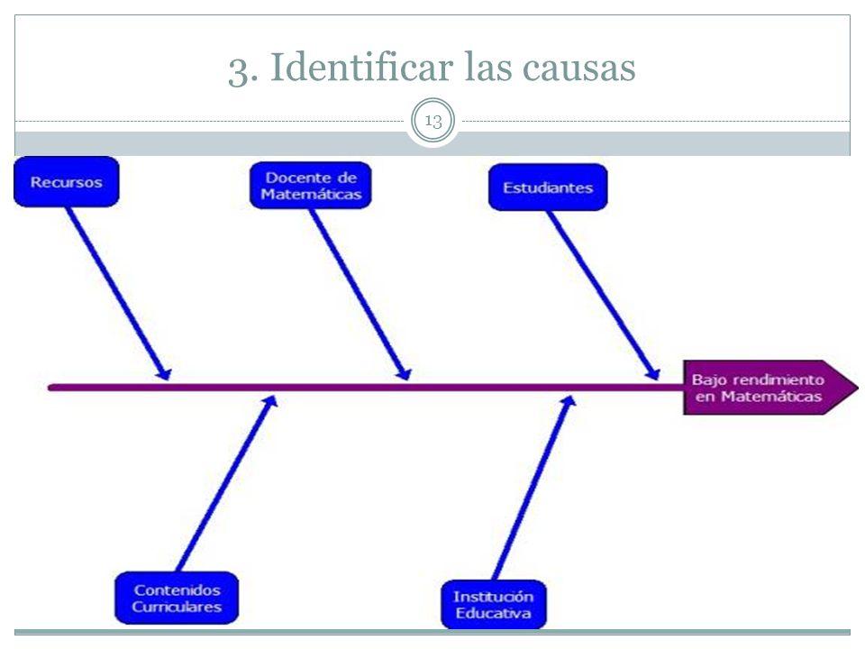 3. Identificar las causas 13