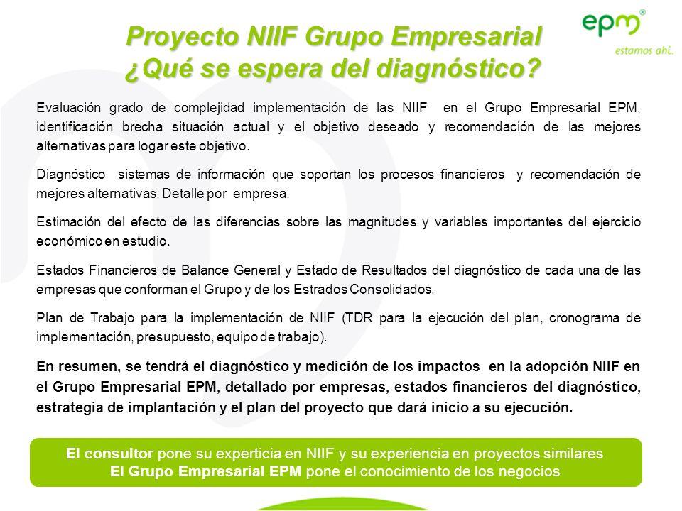 Evaluación grado de complejidad implementación de las NIIF en el Grupo Empresarial EPM, identificación brecha situación actual y el objetivo deseado y