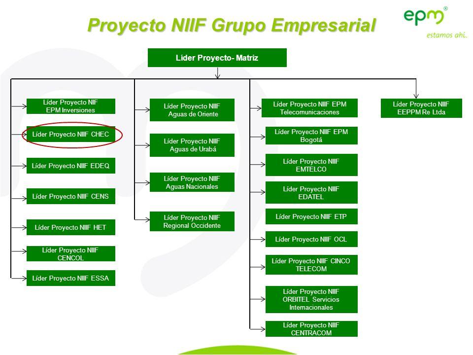 Líder Proyecto- Matriz Líder Proyecto NIIF EPM Telecomunicaciones Líder Proyecto NIIF Regional Occidente Líder Proyecto NIIF Aguas Nacionales Líder Pr