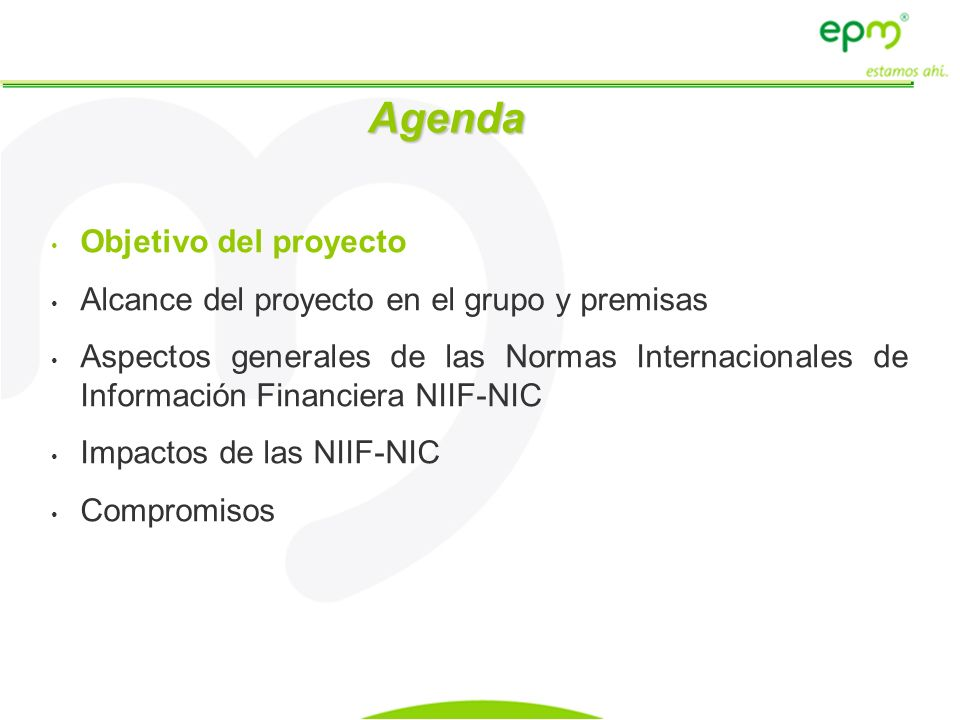 Agenda Objetivo del proyecto Alcance del proyecto en el grupo y premisas Aspectos generales de las Normas Internacionales de Información Financiera NI