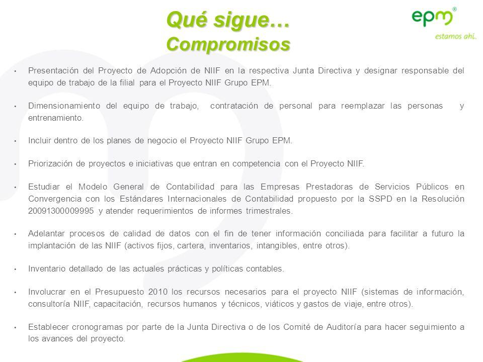 Presentación del Proyecto de Adopción de NIIF en la respectiva Junta Directiva y designar responsable del equipo de trabajo de la filial para el Proye