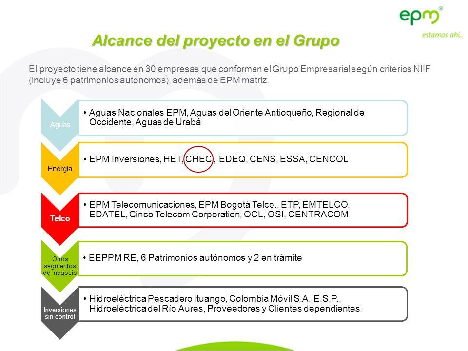 Alcance del proyecto en el Grupo El proyecto tiene alcance en 30 empresas que conforman el Grupo Empresarial según criterios NIIF (incluye 6 patrimoni