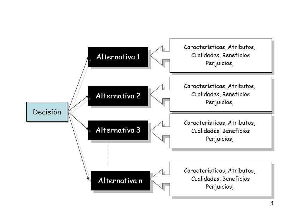 4 Decisión Alternativa 1 Alternativa 2 Alternativa 3 Alternativa n Características, Atributos, Cualidades, Beneficios Perjuicios, Características, Atr
