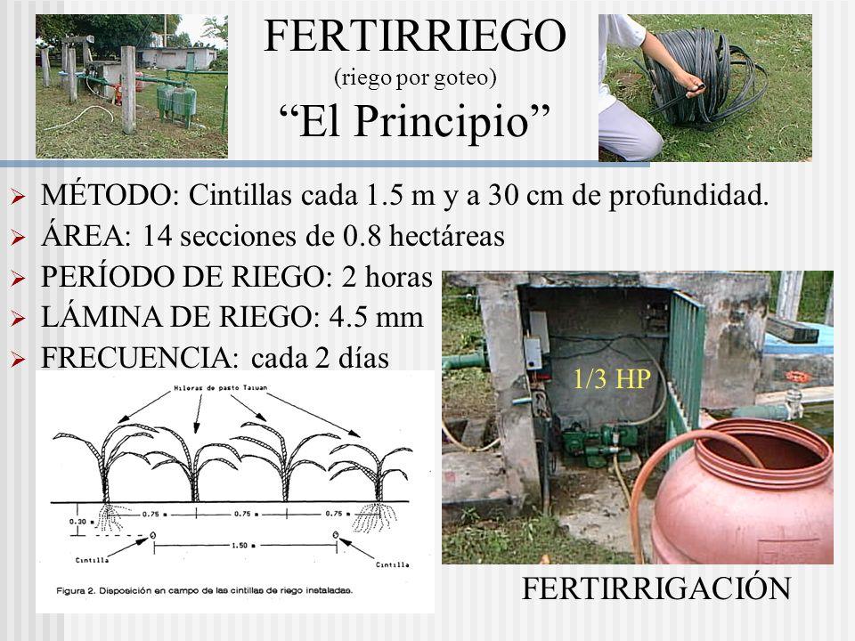 Pastoreo Racional Intensivo (PARI): Pastoreo diario (forraje nuevo) Respeta el ciclo de crecimiento de la planta Suplementación estratégica. Desparasi