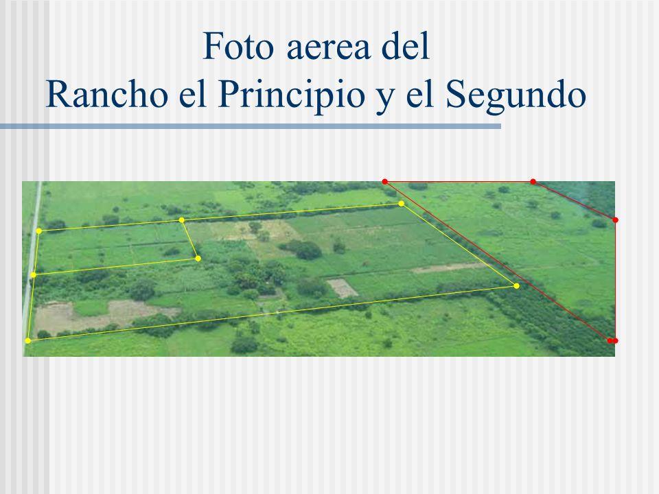 División de potreros y Fertirriego en El Principio 2,000 m 2 c/u 2 ½ 4 2