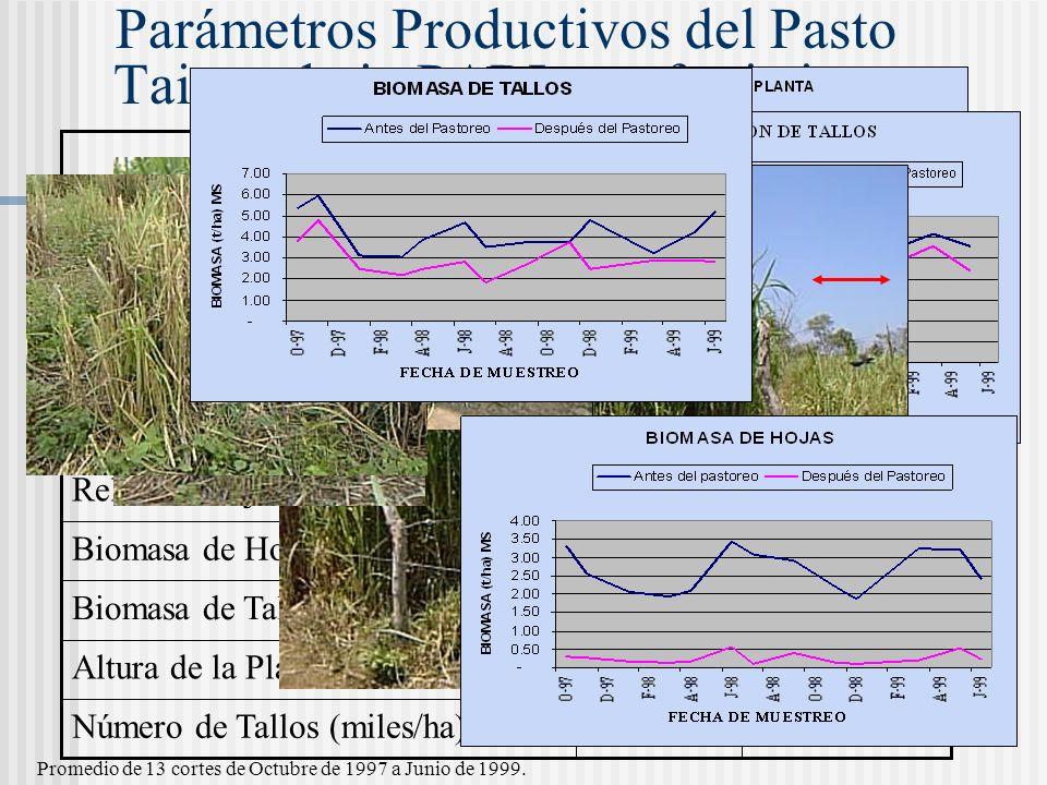 Parámetros Productivos del Pasto Taiwan bajo PARI con fertirriego 0.91.7Altura de la Planta (m) 206253Número de Tallos (miles/ha) 0.1600Biomasa de Tal