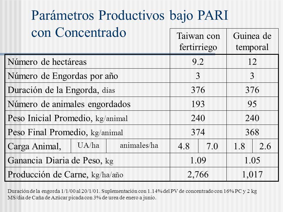 Parámetros Productivos bajo PARI con Concentrado Guinea de temporal Duración de la engorda 1/1/00 al 20/1/01. Suplementación con 1.14% del PV de conce