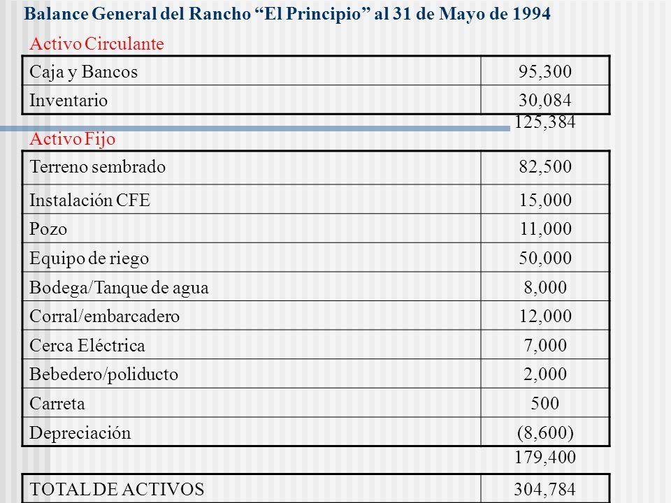 Balance General del Rancho El Principio al 31 de Mayo de 1993 Acreedores diversos0 Documentos por pagar0 Pasivo Circulante Capital Social188,000 Utili