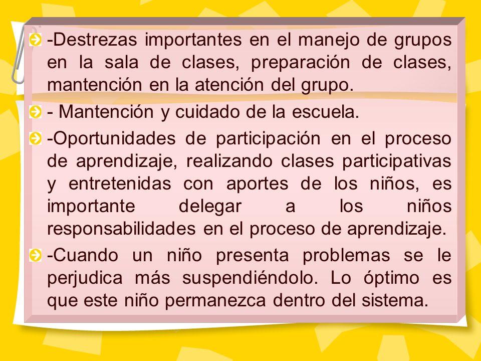 -Destrezas importantes en el manejo de grupos en la sala de clases, preparación de clases, mantención en la atención del grupo. - Mantención y cuidado