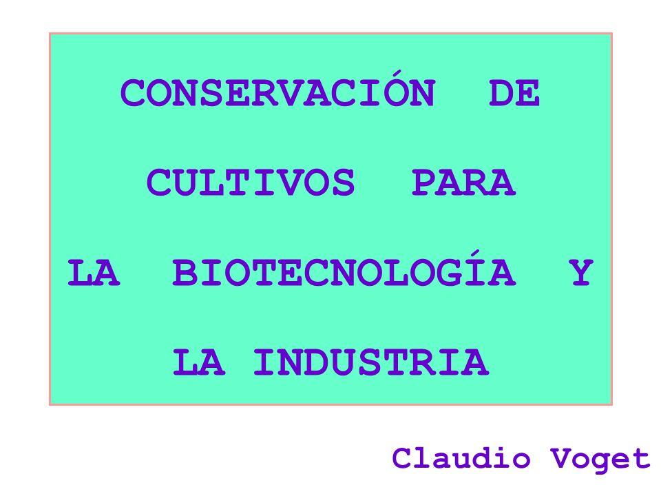 CONSERVACIÓN DE CULTIVOS PARA LA BIOTECNOLOGÍA Y LA INDUSTRIA Claudio Voget