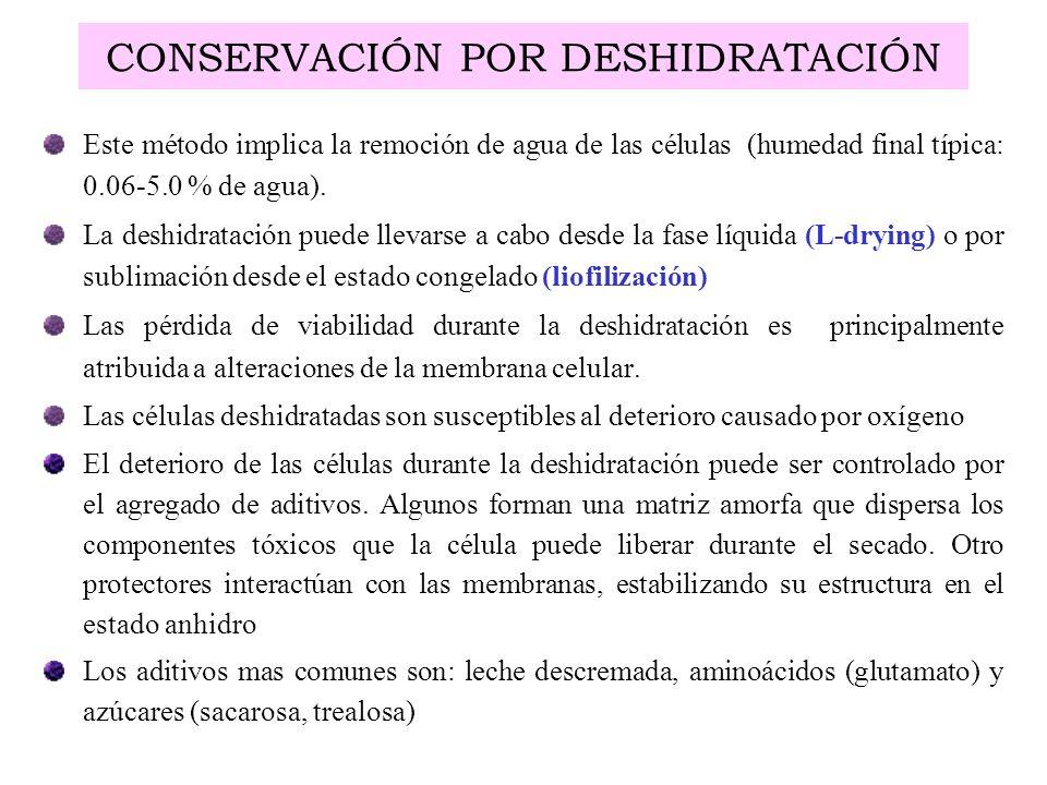 CONSERVACIÓN POR DESHIDRATACIÓN Este método implica la remoción de agua de las células (humedad final típica: 0.06-5.0 % de agua). La deshidratación p