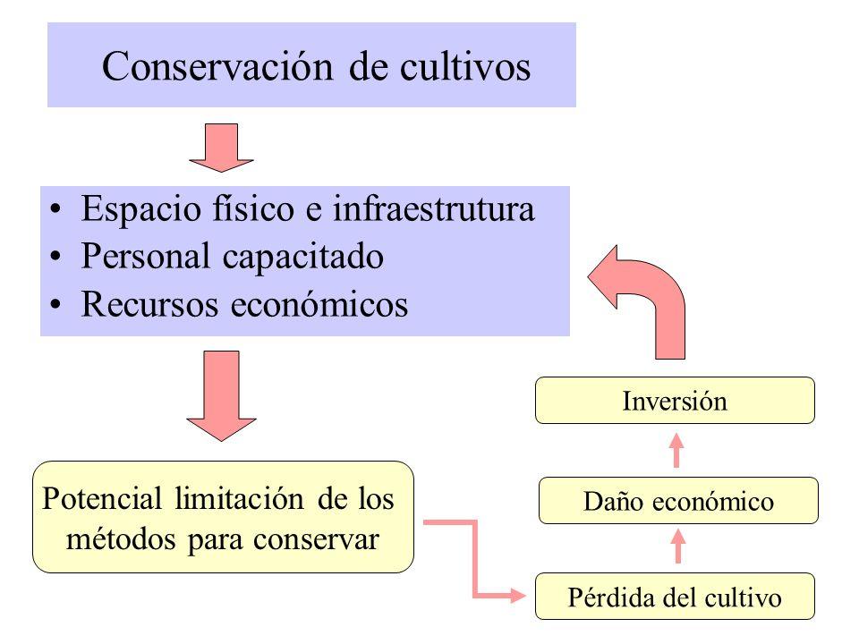 Conservación de cultivos Espacio físico e infraestrutura Personal capacitado Recursos económicos Pérdida del cultivo Potencial limitación de los métod