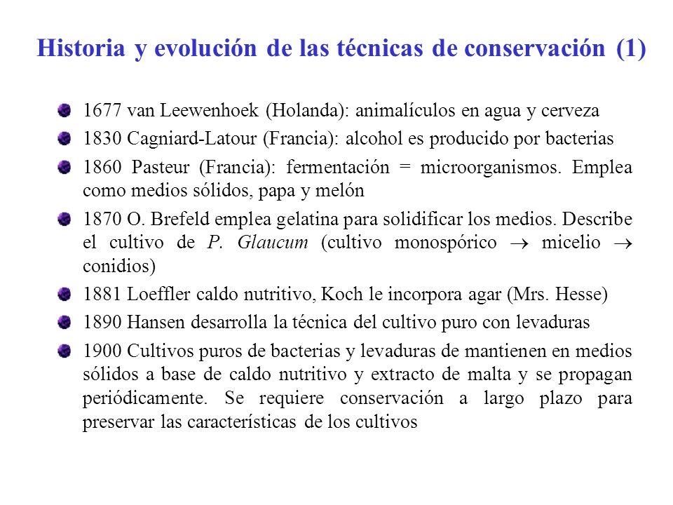 Historia y evolución de las técnicas de conservación (1) 1677 van Leewenhoek (Holanda): animalículos en agua y cerveza 1830 Cagniard-Latour (Francia):