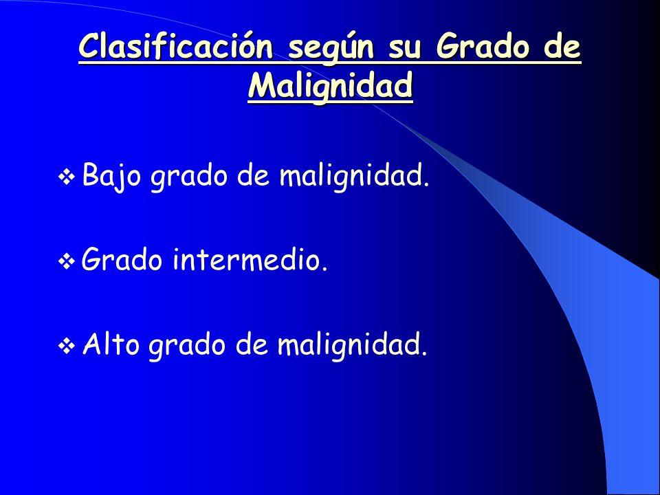 Características Clínicas Bajo grado de maligniddad -Masa indolora de crecimiento relativamente lento y límite difuso.