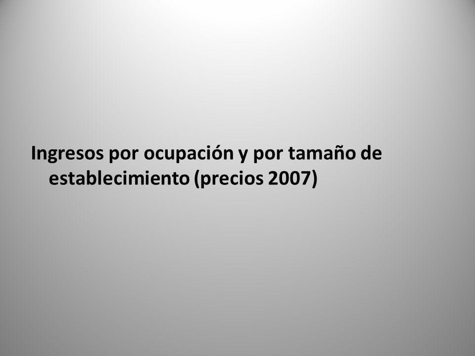 Ingresos por ocupación y por tamaño de establecimiento (precios 2007)