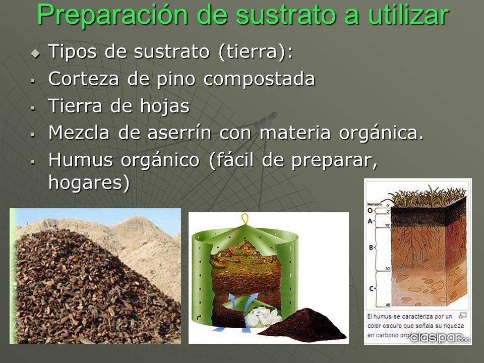 Preparación de sustrato a utilizar Tipos de sustrato (tierra): Tipos de sustrato (tierra): Corteza de pino compostada Corteza de pino compostada Tierr