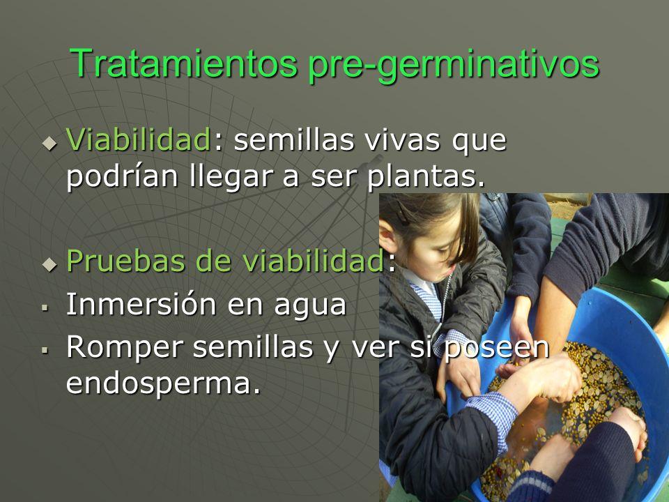 Tratamientos pre-germinativos Viabilidad: semillas vivas que podrían llegar a ser plantas. Viabilidad: semillas vivas que podrían llegar a ser plantas