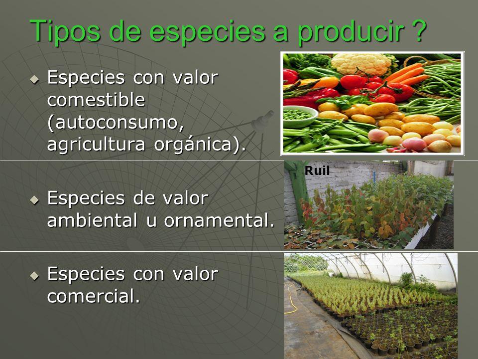 Tipos de especies a producir ? Especies con valor comestible (autoconsumo, agricultura orgánica). Especies con valor comestible (autoconsumo, agricult
