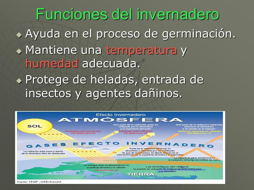 Funciones del invernadero Ayuda en el proceso de germinación. Ayuda en el proceso de germinación. Mantiene una temperatura y humedad adecuada. Mantien