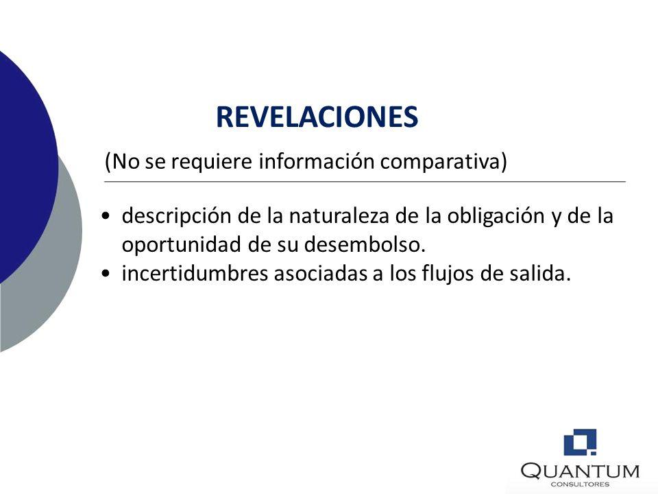 REVELACIONES Por clase de provisión: (No se requiere información comparativa) movimiento del período reversiones incrementos en montos descontados