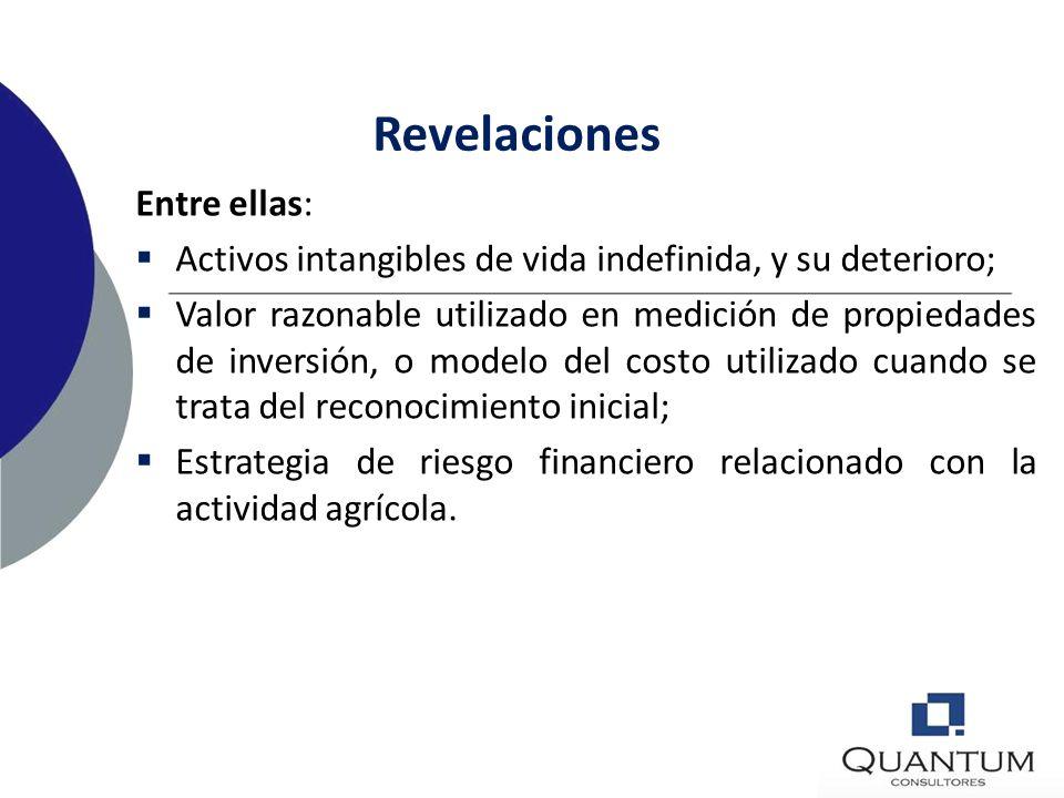 Revelaciones Entre ellas: Activos totalmente depreciados, todavía en uso; Importe de costos por préstamos capitalizados, y tasa de capitalización usad