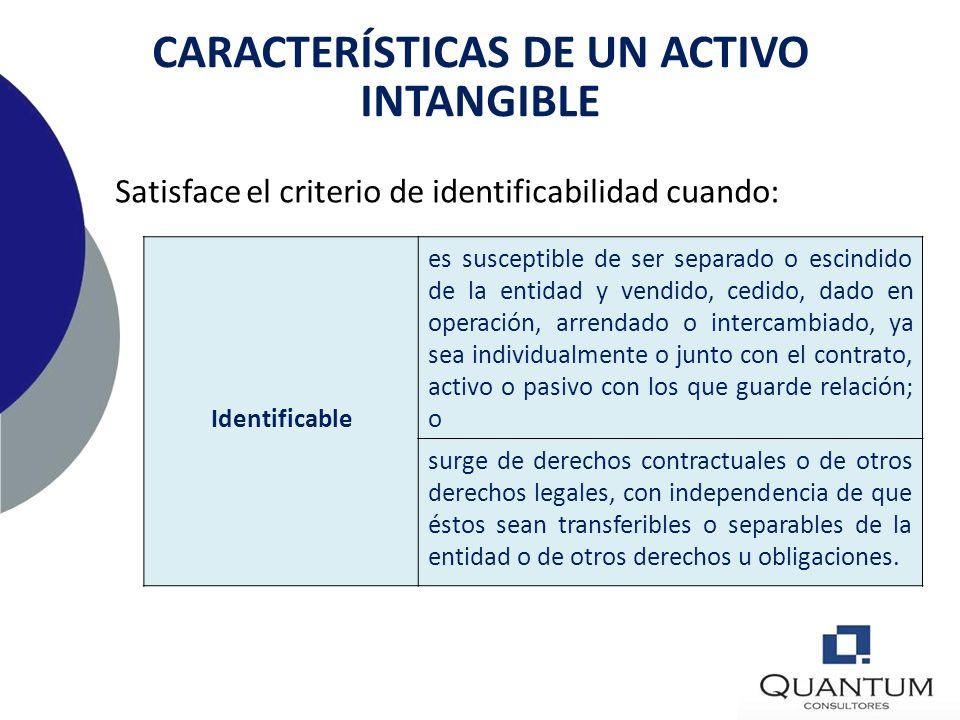 NIC 38 – Activos intangibles Casos especiales Si un activo incluye elementos tangibles e intangibles, la entidad realizará el oportuno juicio para eva