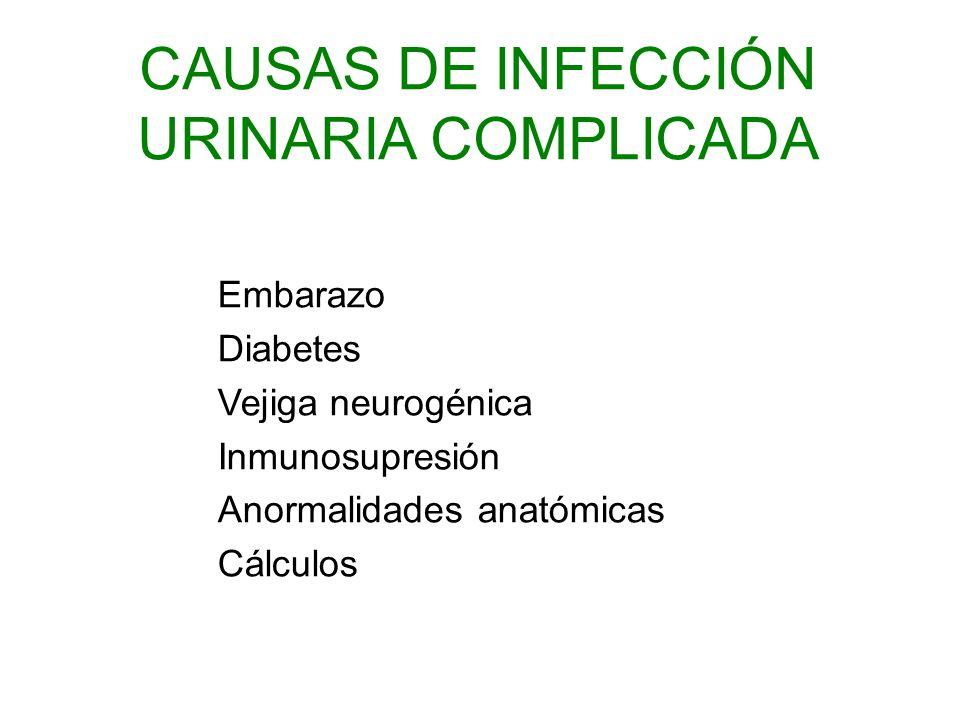 Embarazo Diabetes Vejiga neurogénica Inmunosupresión Anormalidades anatómicas Cálculos CAUSAS DE INFECCIÓN URINARIA COMPLICADA