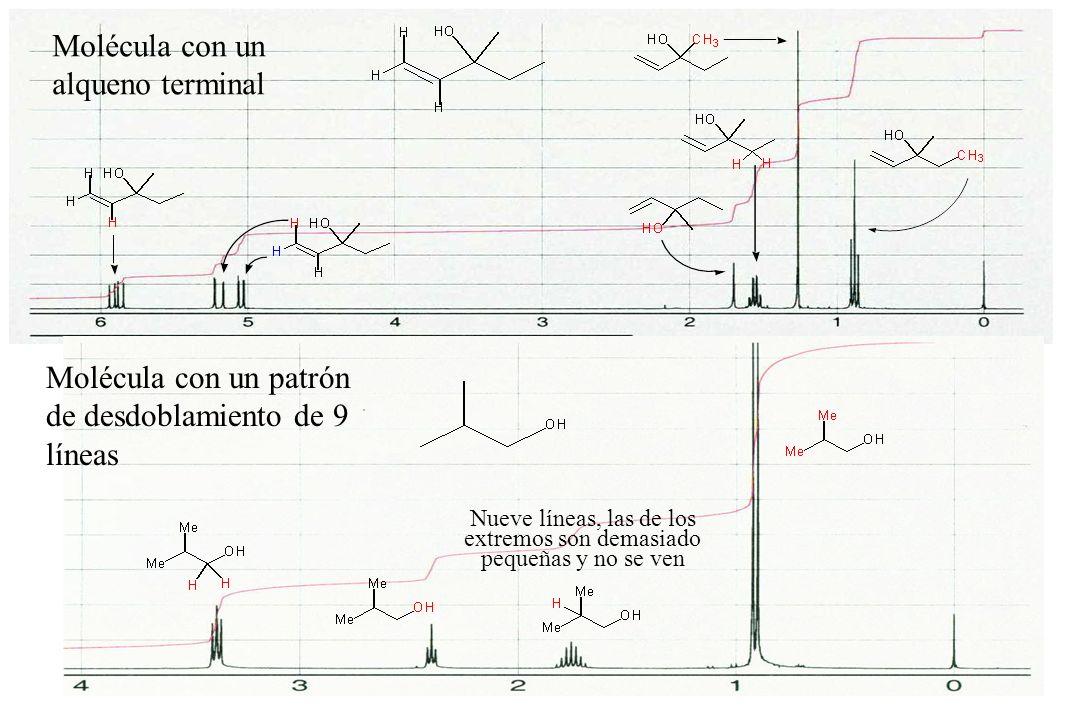 18 Molécula con un alqueno terminal Molécula con un patrón de desdoblamiento de 9 líneas Nueve líneas, las de los extremos son demasiado pequeñas y no se ven