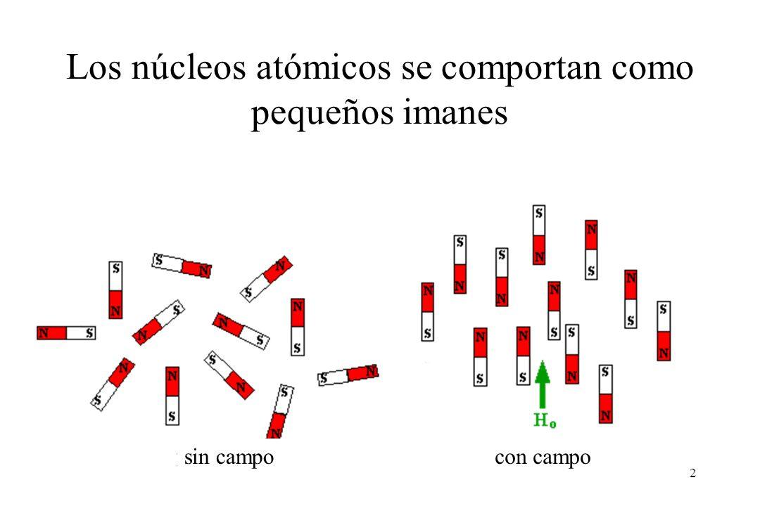 2 sin campocon campo Los núcleos atómicos se comportan como pequeños imanes