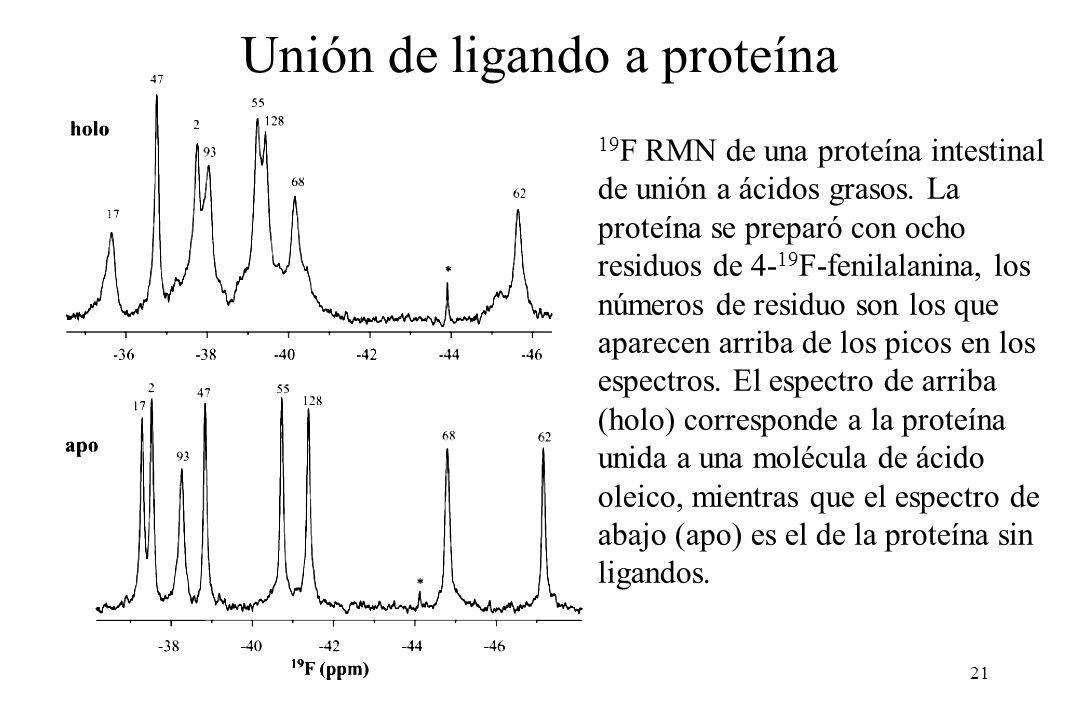 21 19 F RMN de una proteína intestinal de unión a ácidos grasos.