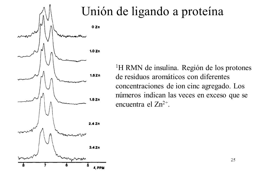 25 1 H RMN de insulina.