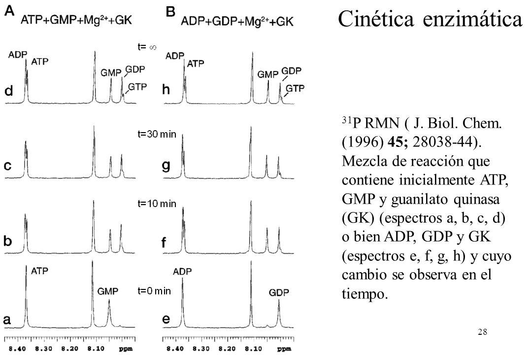 28 31 P RMN ( J.Biol. Chem. (1996) 45; 28038-44).