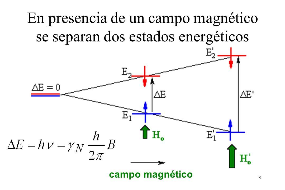 3 campo magnético En presencia de un campo magnético se separan dos estados energéticos