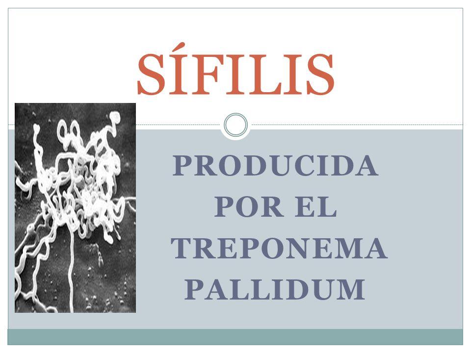 SÍFILIS PRODUCIDA POR EL TREPONEMA PALLIDUM