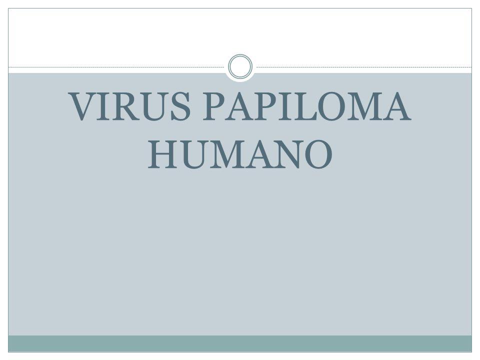 Virus del papiloma humano (HPV) Es la infección de transmisión sexual (ITS) más frecuente.
