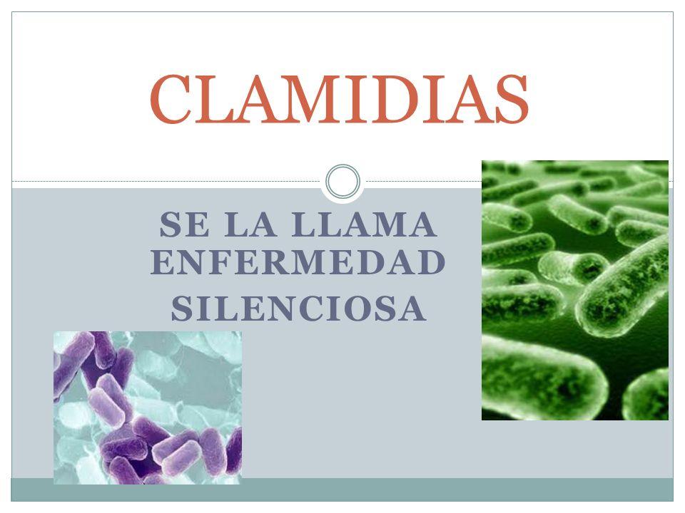CLAMIDIAS SE LA LLAMA ENFERMEDAD SILENCIOSA