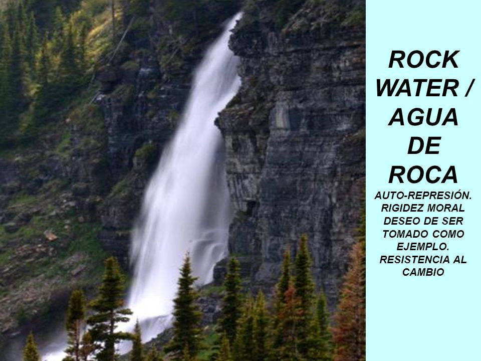ROCK WATER / AGUA DE ROCA AUTO-REPRESIÓN. RIGIDEZ MORAL DESEO DE SER TOMADO COMO EJEMPLO. RESISTENCIA AL CAMBIO