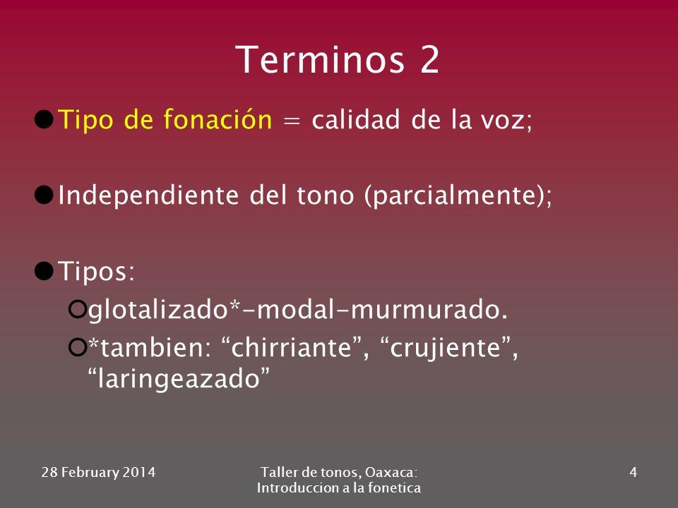 Terminos 2 Tipo de fonación = calidad de la voz; Independiente del tono (parcialmente); Tipos: glotalizado*-modal-murmurado.