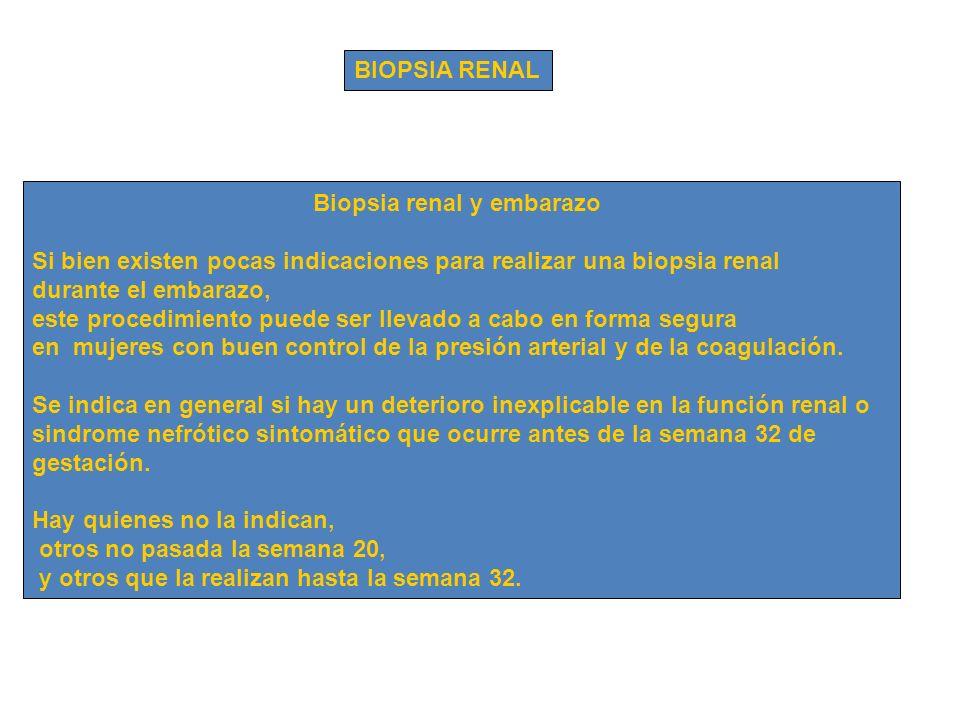 BIOPSIA RENAL Biopsia renal y embarazo Si bien existen pocas indicaciones para realizar una biopsia renal durante el embarazo, este procedimiento pued