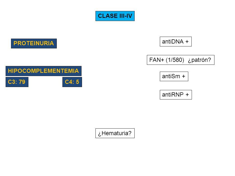 CLASE III-IV PROTEINURIA HIPOCOMPLEMENTEMIA antiDNA + FAN+ (1/580) ¿patrón? antiSm + antiRNP + C3: 79C4: 5 ¿Hematuria?